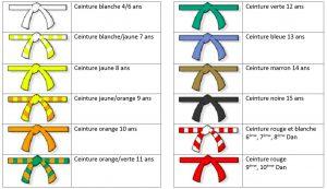 Style magnifique vente professionnelle produits de qualité Les ceintures - Judo Club Lansargues