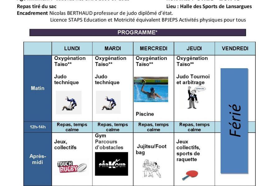 Stage Judo Vacances